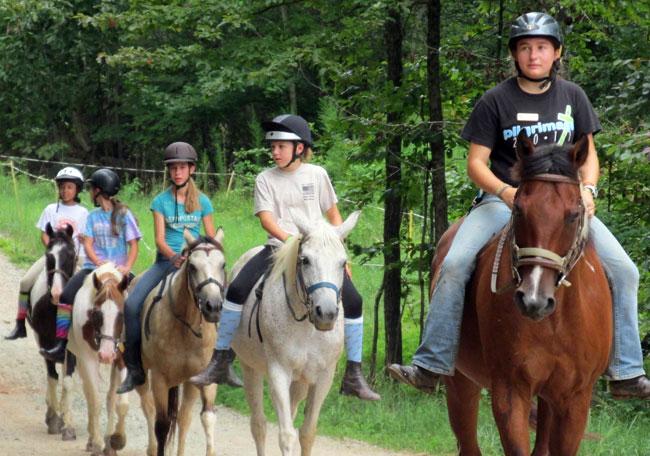 CR-Horses